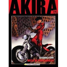Manga - Akira tom 13