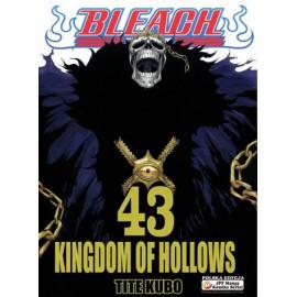 Manga Bleach - Tom 43