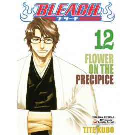 Manga Bleach - Tom 12
