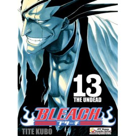 Manga Bleach - Tom 13