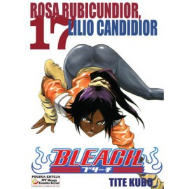 Manga Bleach - Tom 17