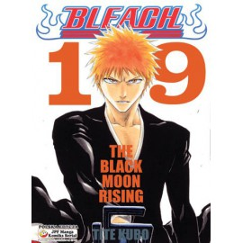 Manga Bleach - Tom 19