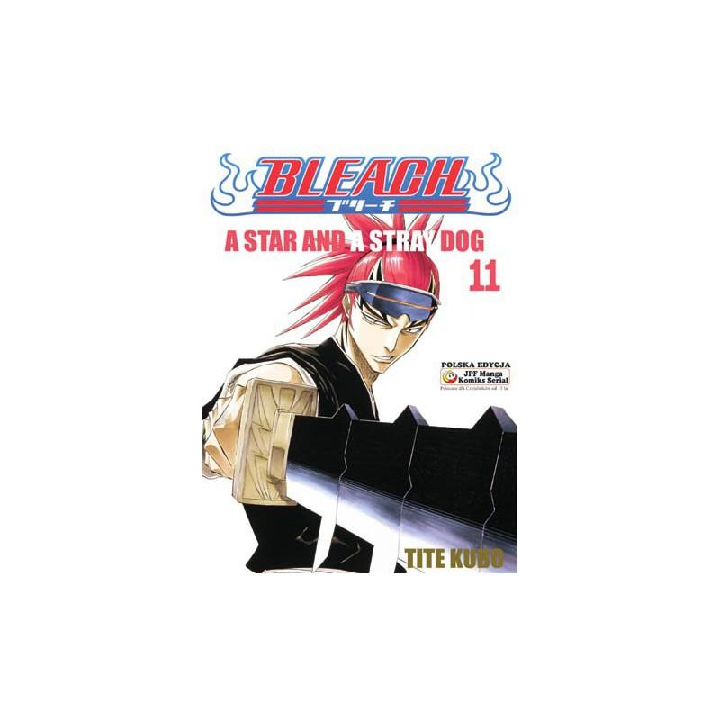 Manga Bleach - Tom 11